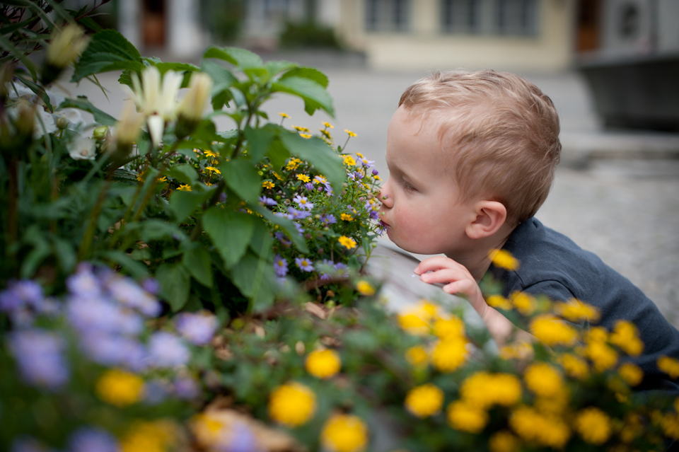 Sniffing flowers in the old city square, Interlaken, Switzerland
