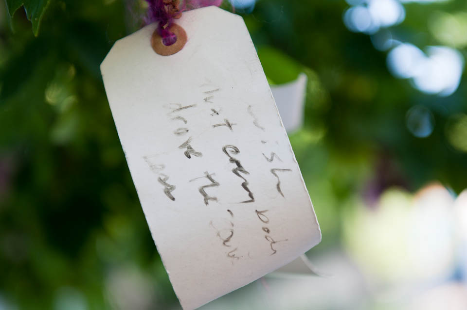 """I wish that every body drove the cars less"" - a tag hung from a wish tree in a north Boulder yard."