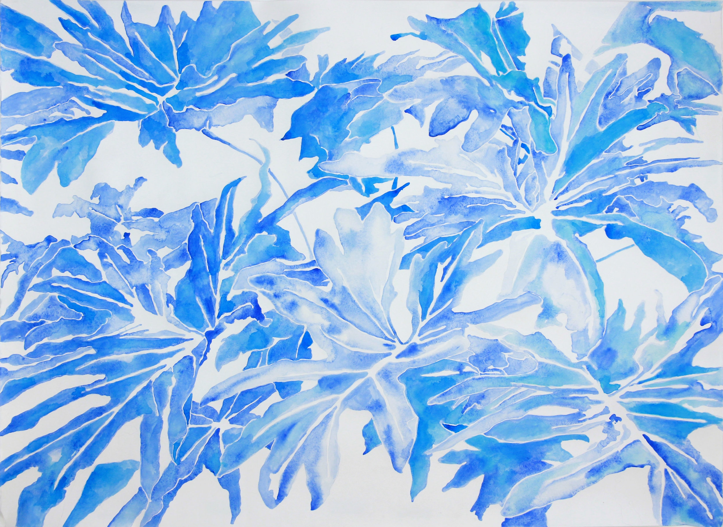 untitled (philodendron in blues II)