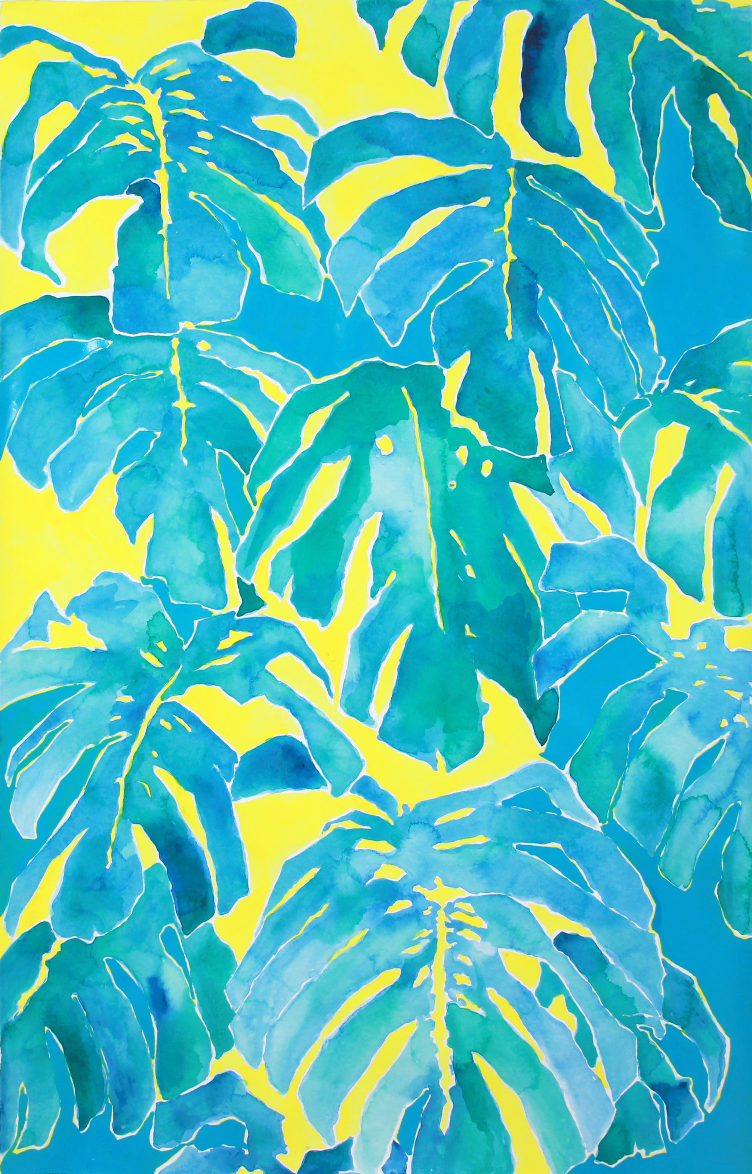 philodendron monstera II
