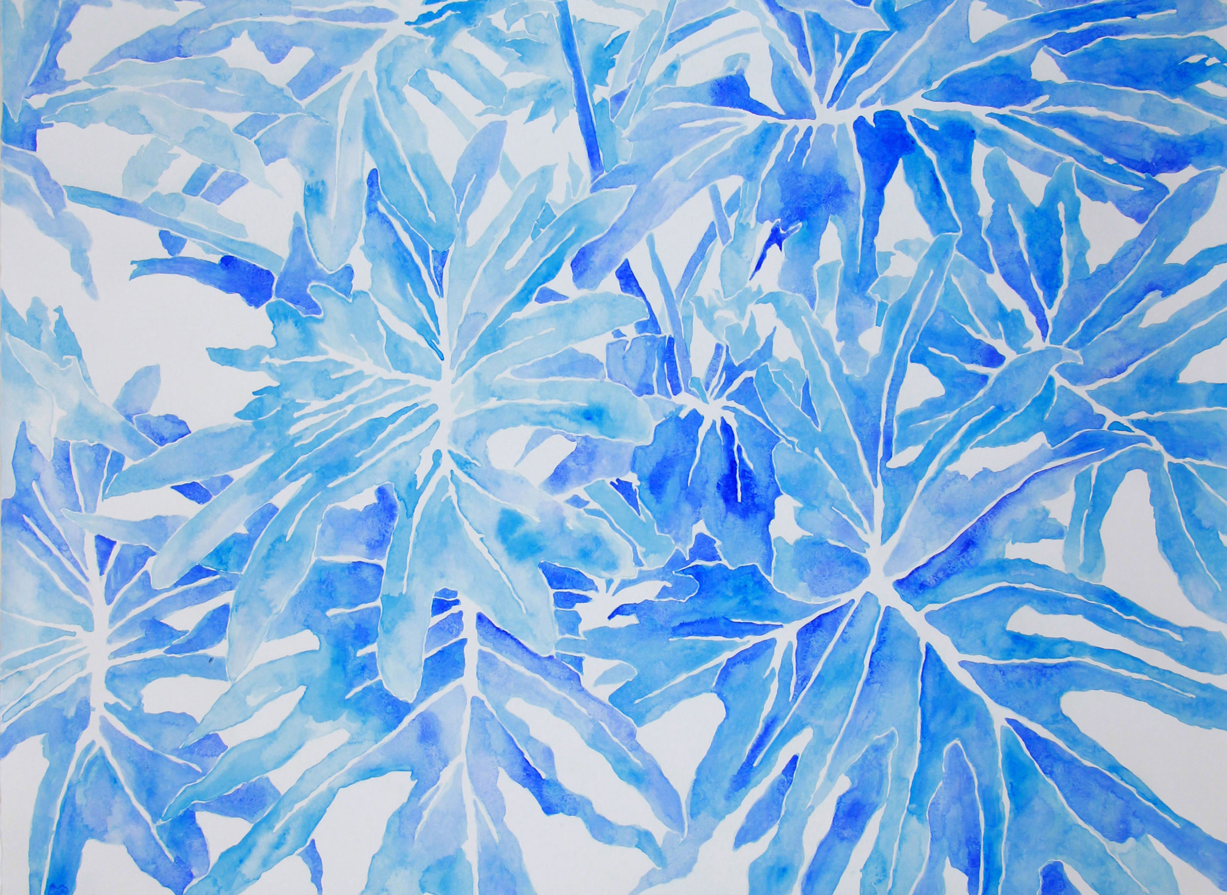 untitled (philodendron in blues I)