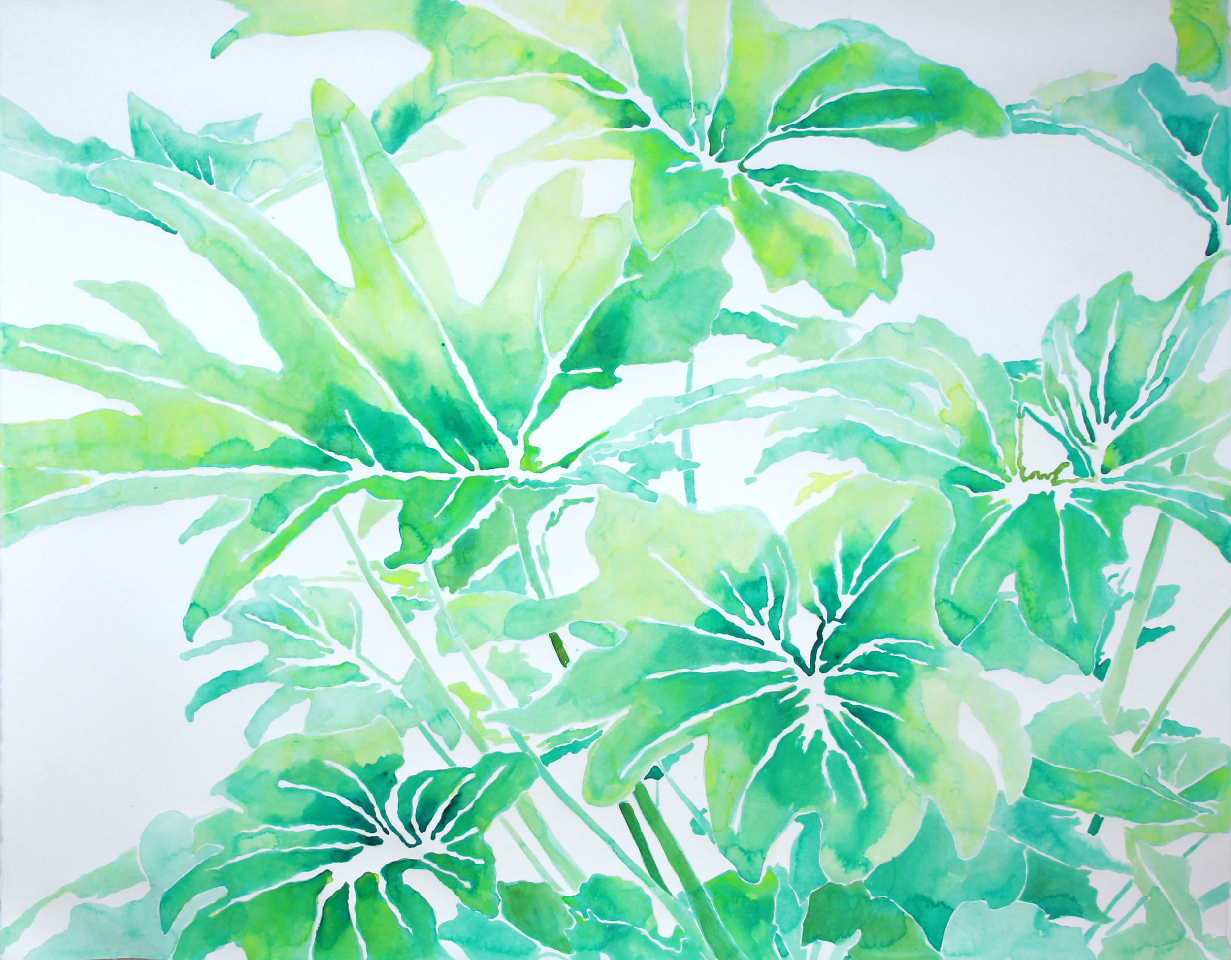 untitled (philodendron in greens)