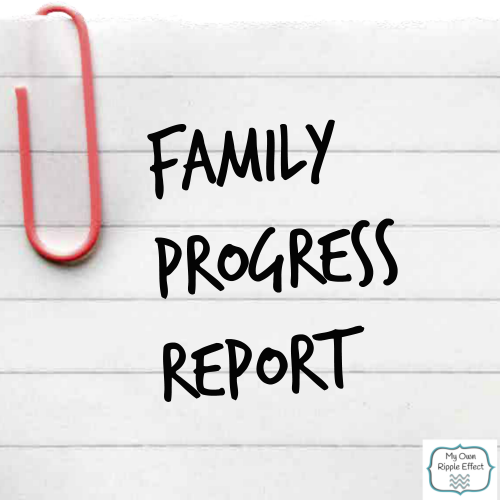 Family-Progress-Report-December-2013.png