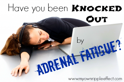 Have-you-been-Knocked-Out-by-Adrenal-Fatigue.png