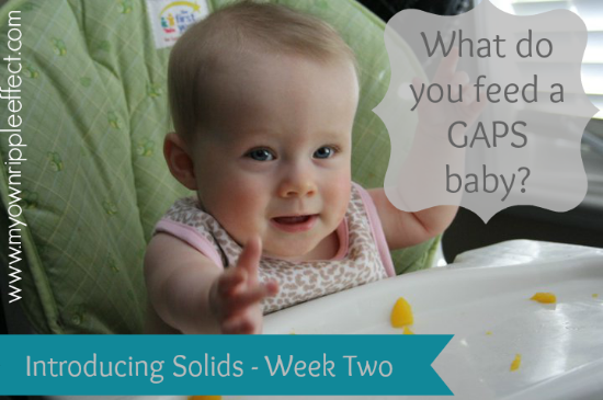 What-do-you-feed-a-GAPS-baby-Introducing-Solids-Week-Two.png