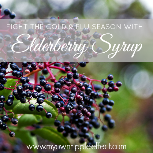 Elderberry-Syrup.png