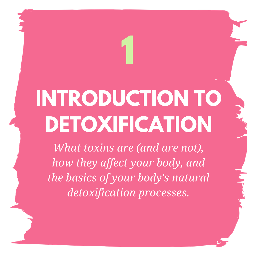 module 1 intro to detox.png
