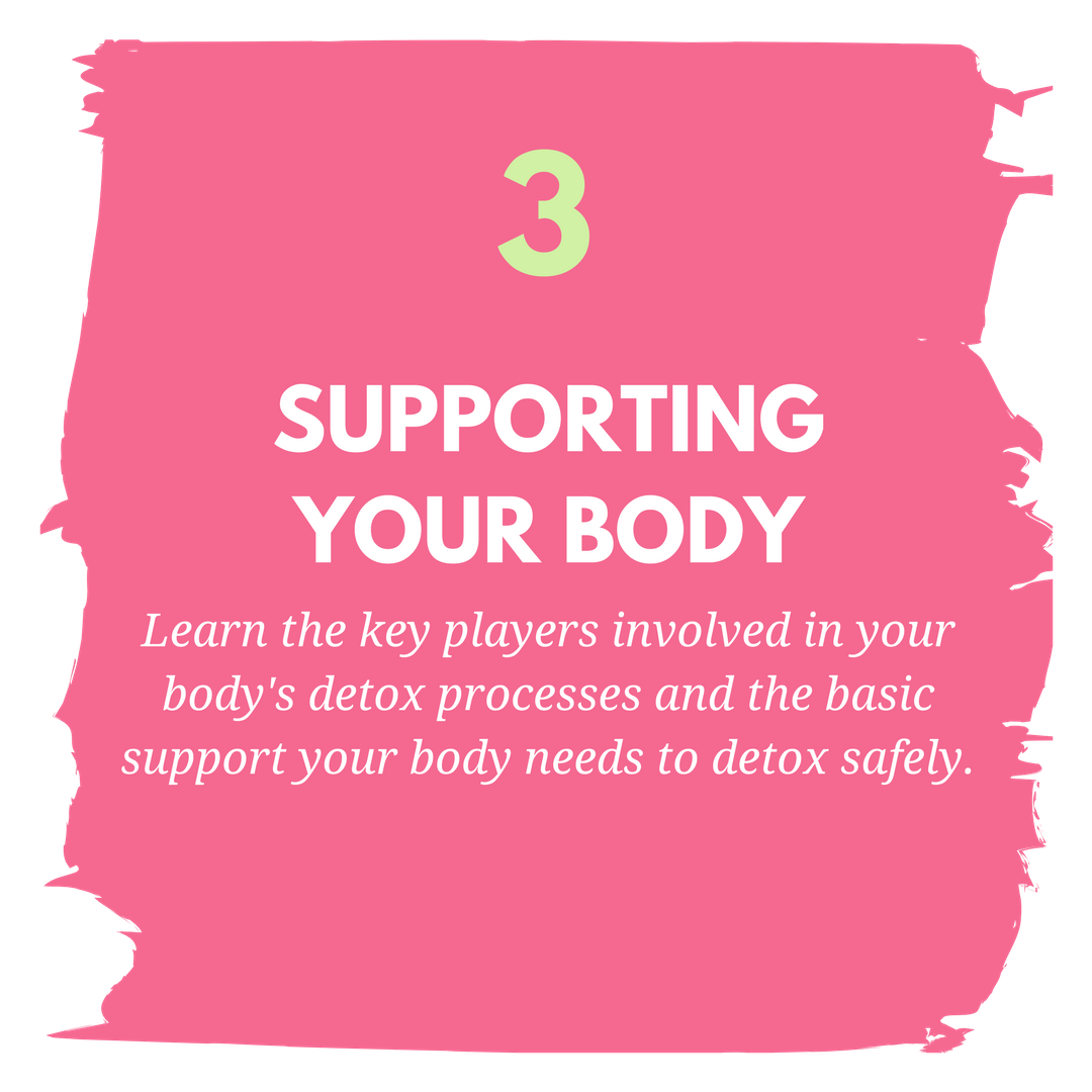 module 3 supporting body (1).png