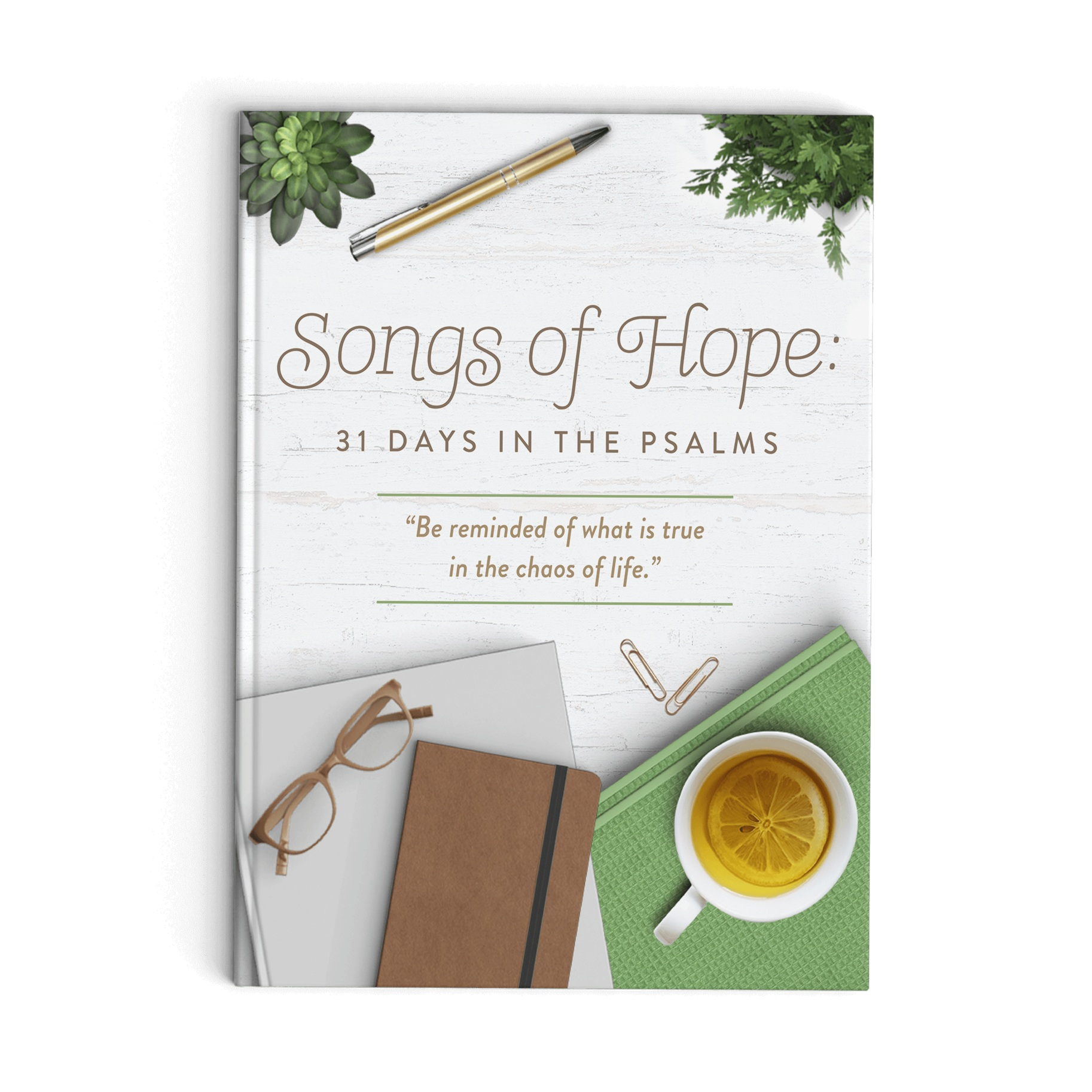 New Devotional - Songs of Hope: 31 Days in the Psalms