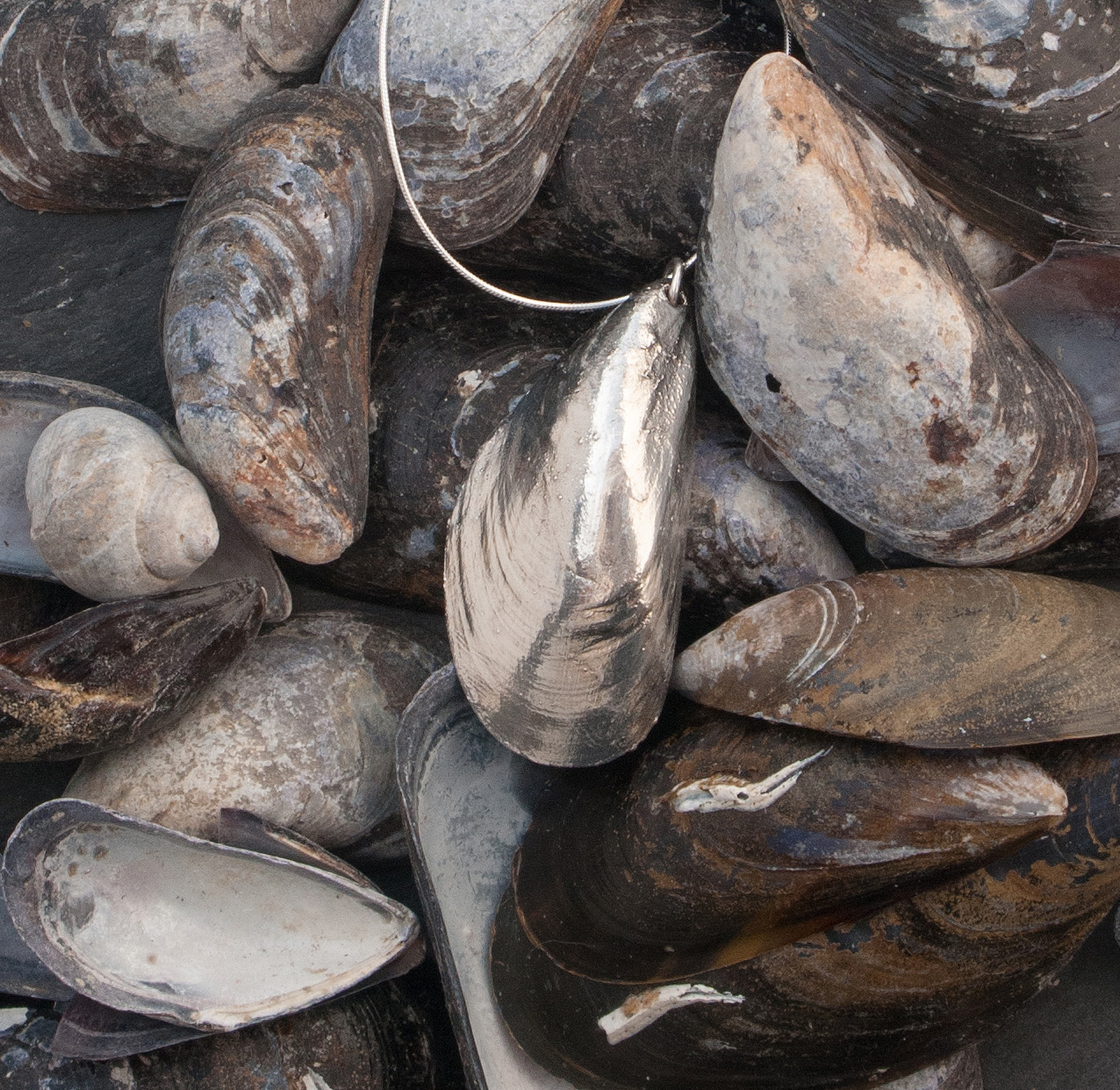 Silvery mussel necklace by Katie Vandyck.jpg