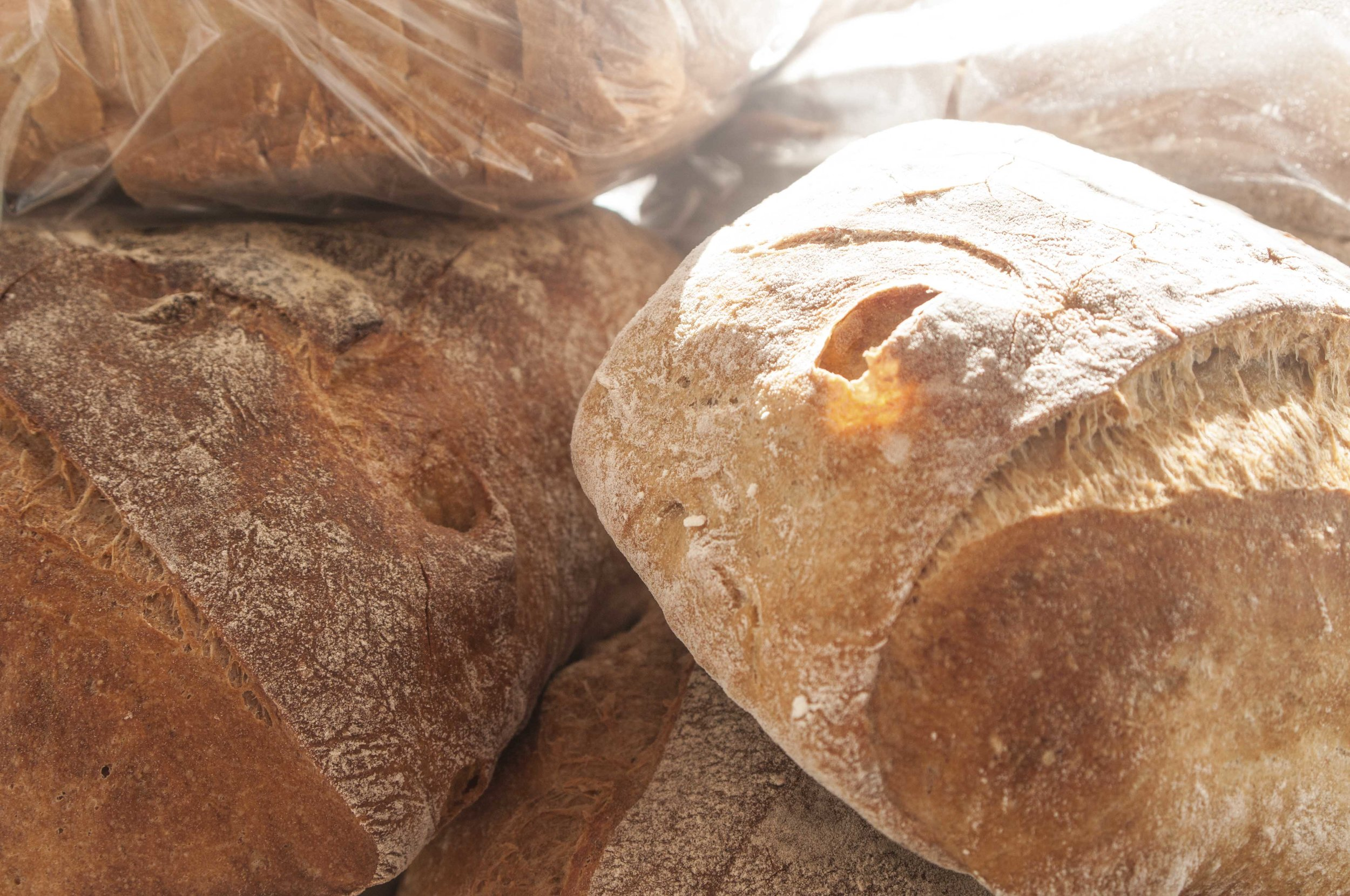 Loaves of bread for web.jpg