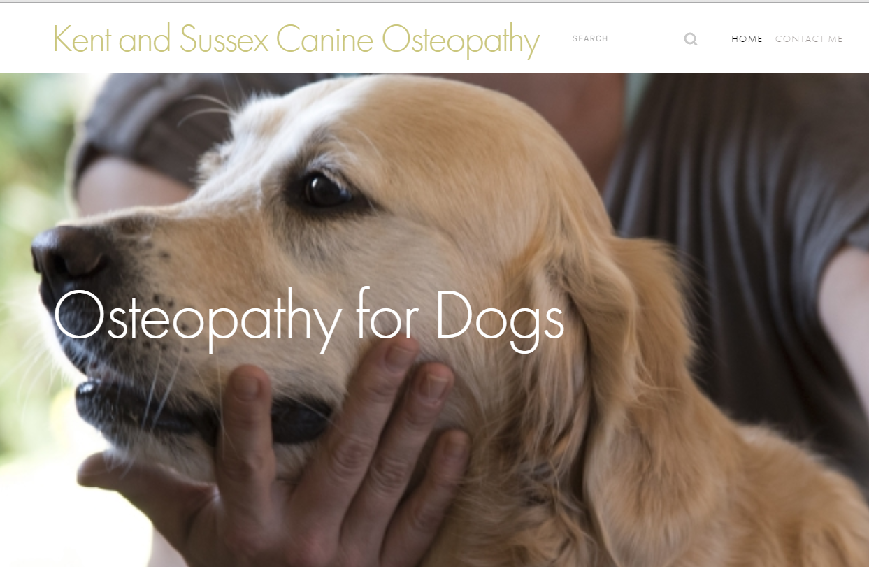 Screenshot Kent and Sussex Osteopathy for dogs.PNG
