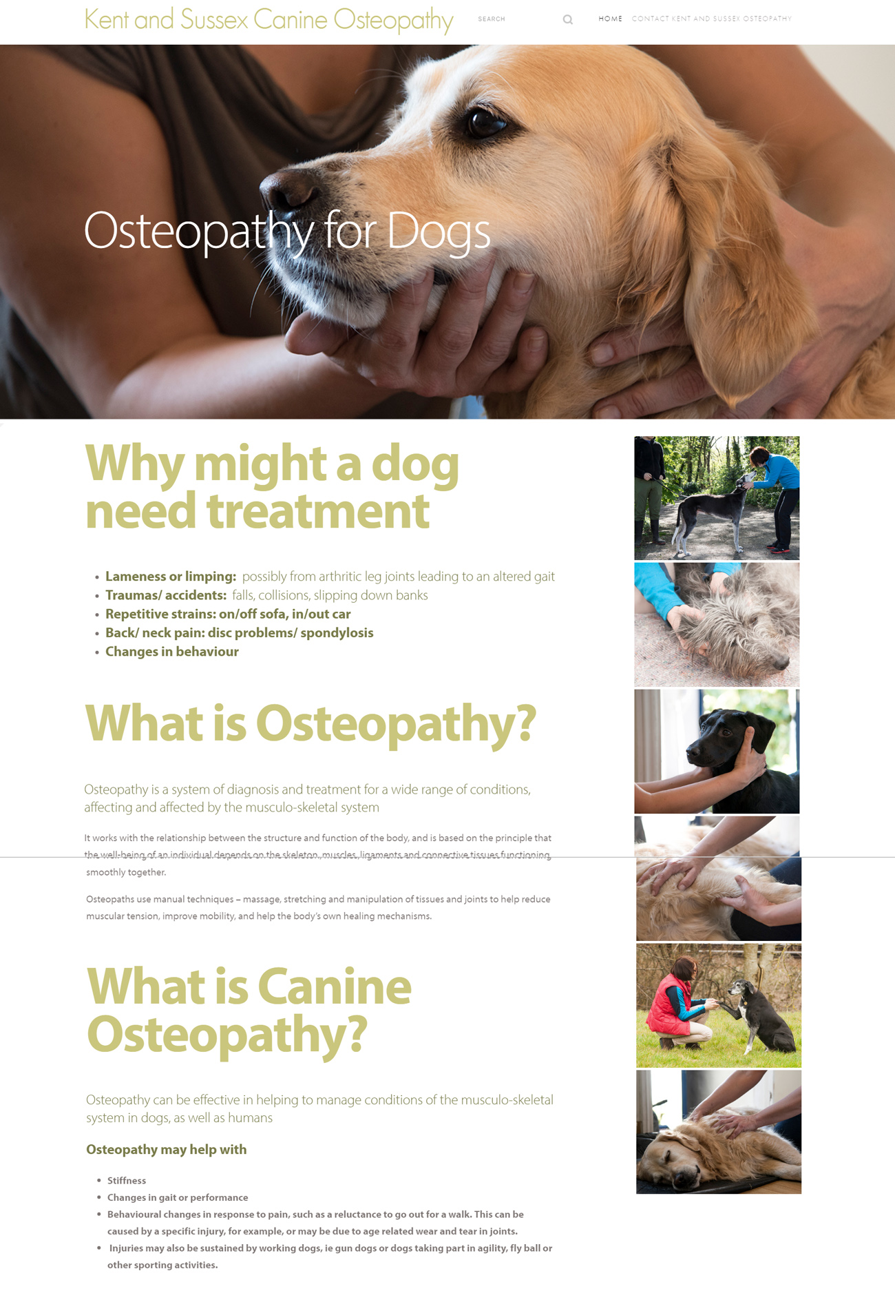 Kent and Sussex Canine Osteopathy Home Page Screenshot.jpg
