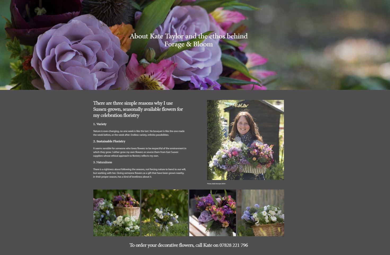 Kate Taylor web page 2.JPG