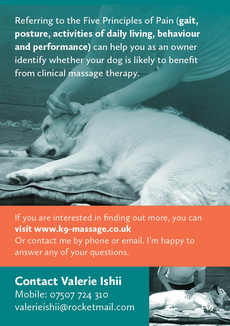 Canine Clinical Massage Leaflet June 2019 Printer's2.jpg