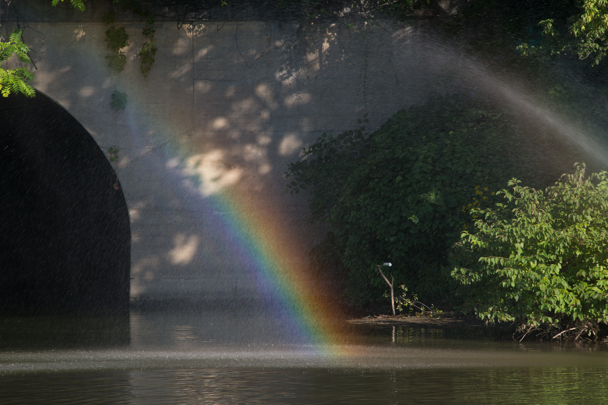 007_Rainbow-239.jpg