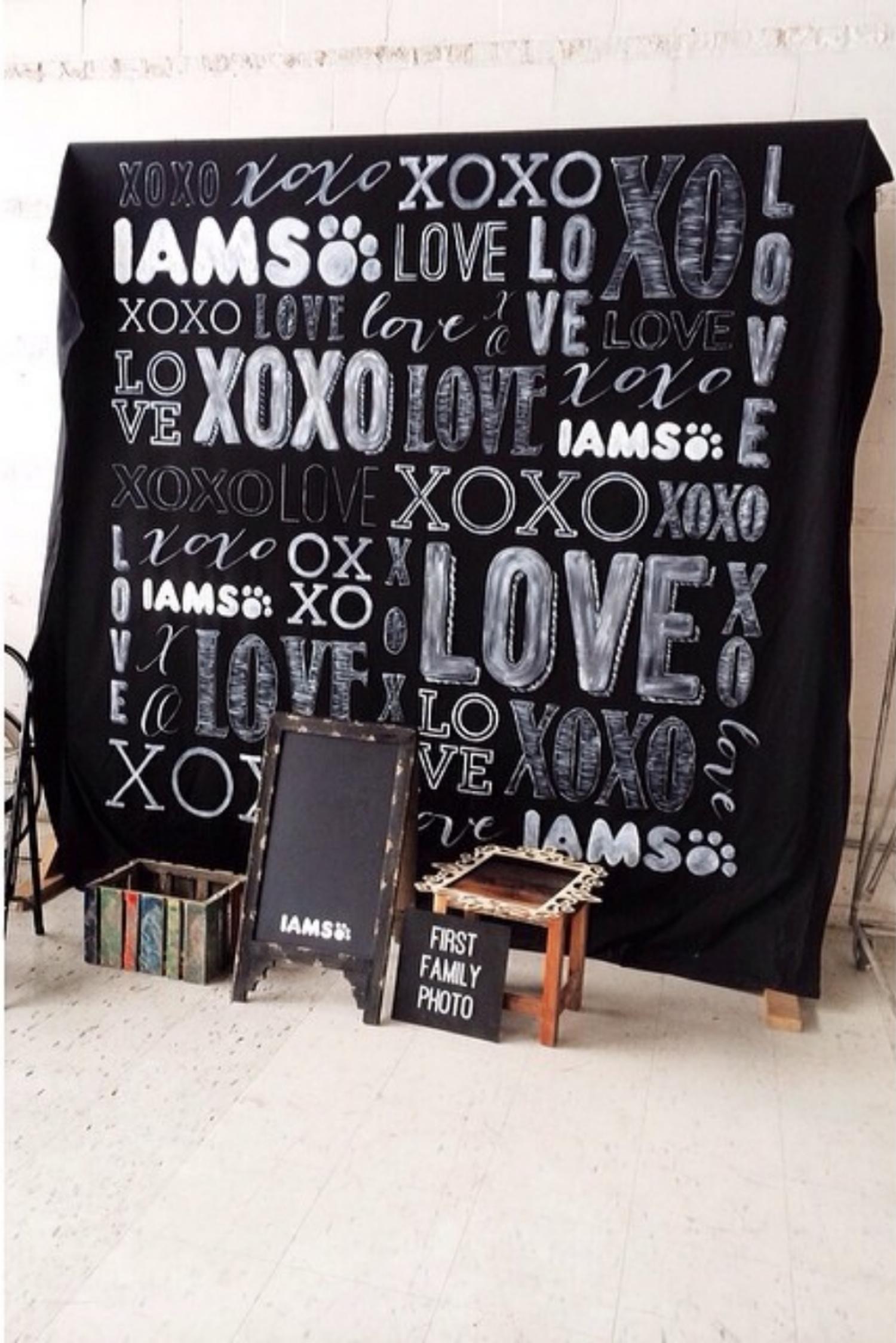 BSaz Creates | Iams Handpainted Love Backdrop