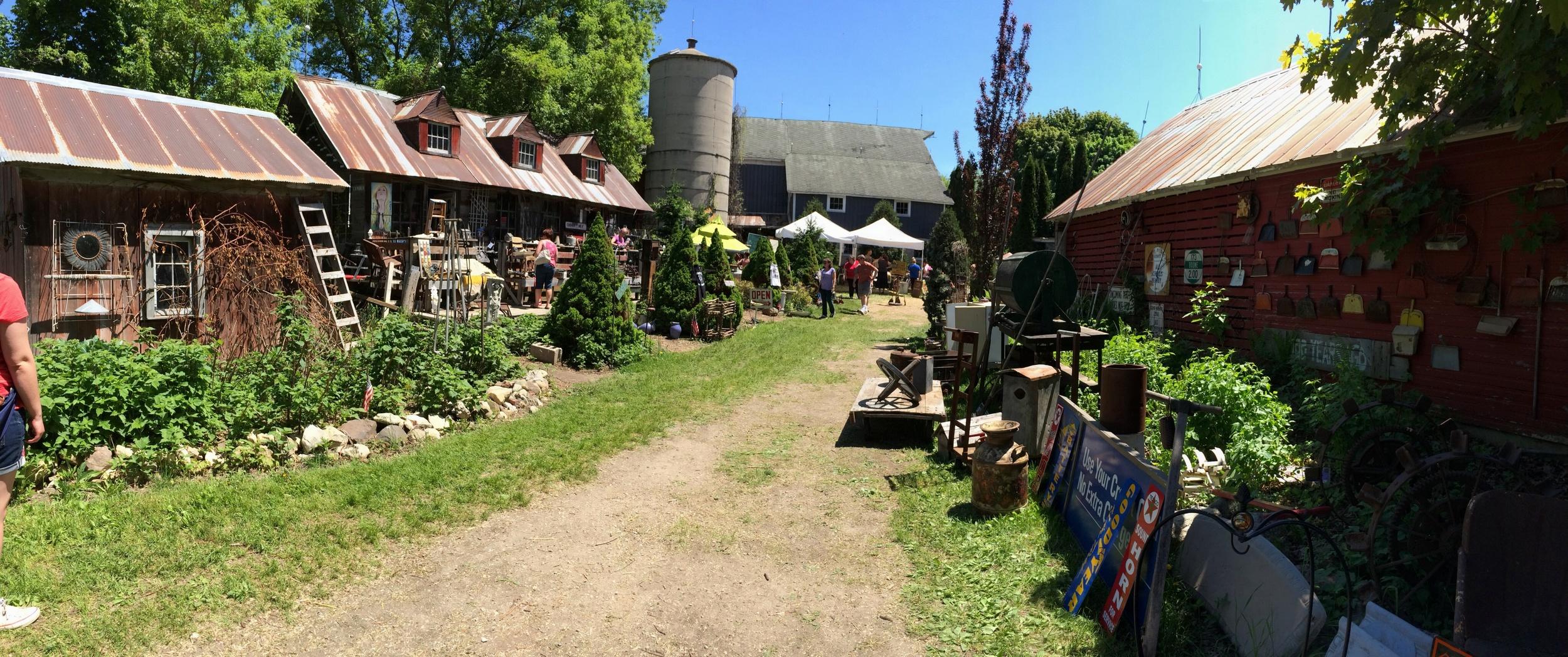 Serendipity Farms   Hippie Tom   Antique Pickin