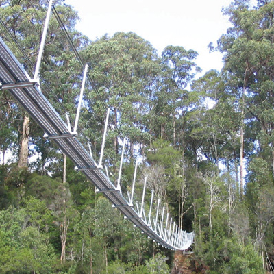 TAHUNE SUSPENSION BRIDGES