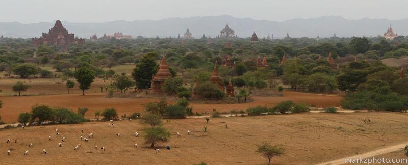 Burma_fb-13.jpg