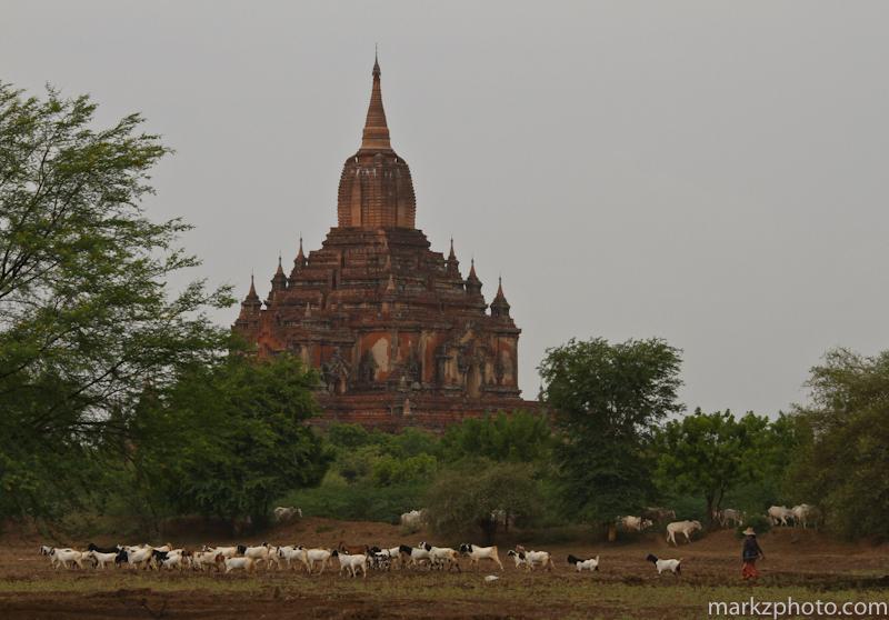 Burma_fb-22.jpg