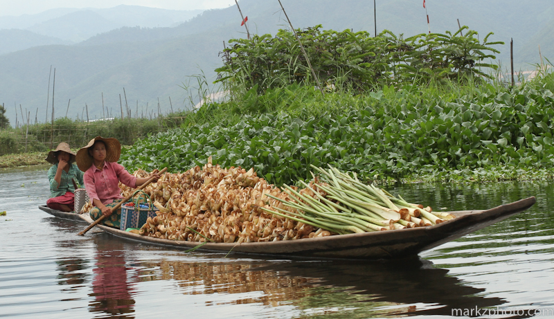 Burma_fb-50.jpg