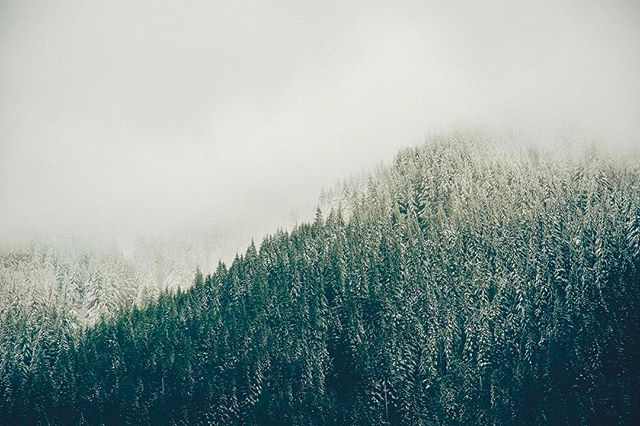 Spring snow in the mountains. ---------------------------------------------------------------------------------------------------------- #oxbowfilm #canon #canoneos #canon_photos #canon_official #sony #sonyalpha #sonya7sii #sonyimages #a7sii #cascade #mthood #oregon #portland #filmmaker #videoproduction #vsco #nature #naturephotography #snow #spring #vsco