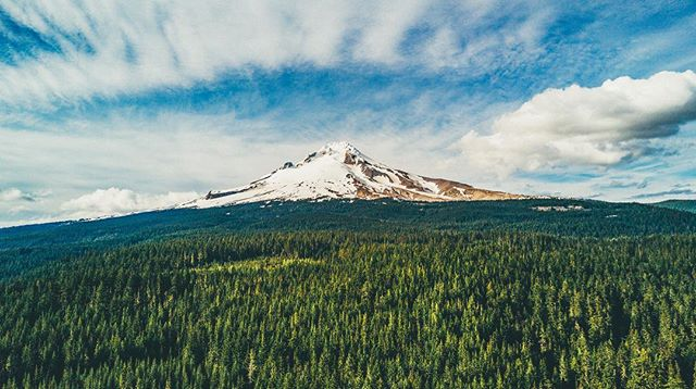Hood in June! Also Figuring out how to get better stills from my drone. Pretty fun! -------------------------------------------------------------------------------------------------------- #djimavic #mavicpro #mavic #djiglobal #mthood #timberline #oregon #drone #dronephotography #drones #dronestagram #oxbowfilm #vsco #vscodrone #filmmaker #naturephotography #videoproduction #landscape #hcsc