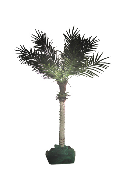 Table Centre Palms - Approx 1.2m - 20+ available  We have improved the stands since this photo was taken