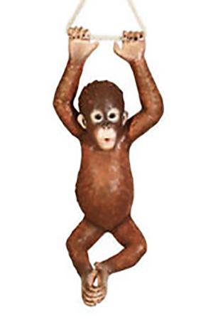 Life sized 3D Orangutan (baby)