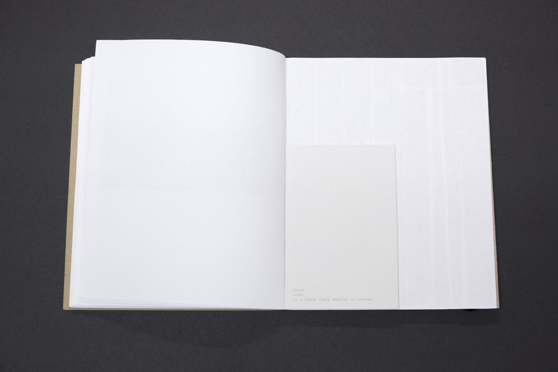 abowerforsisters-book-22.jpg