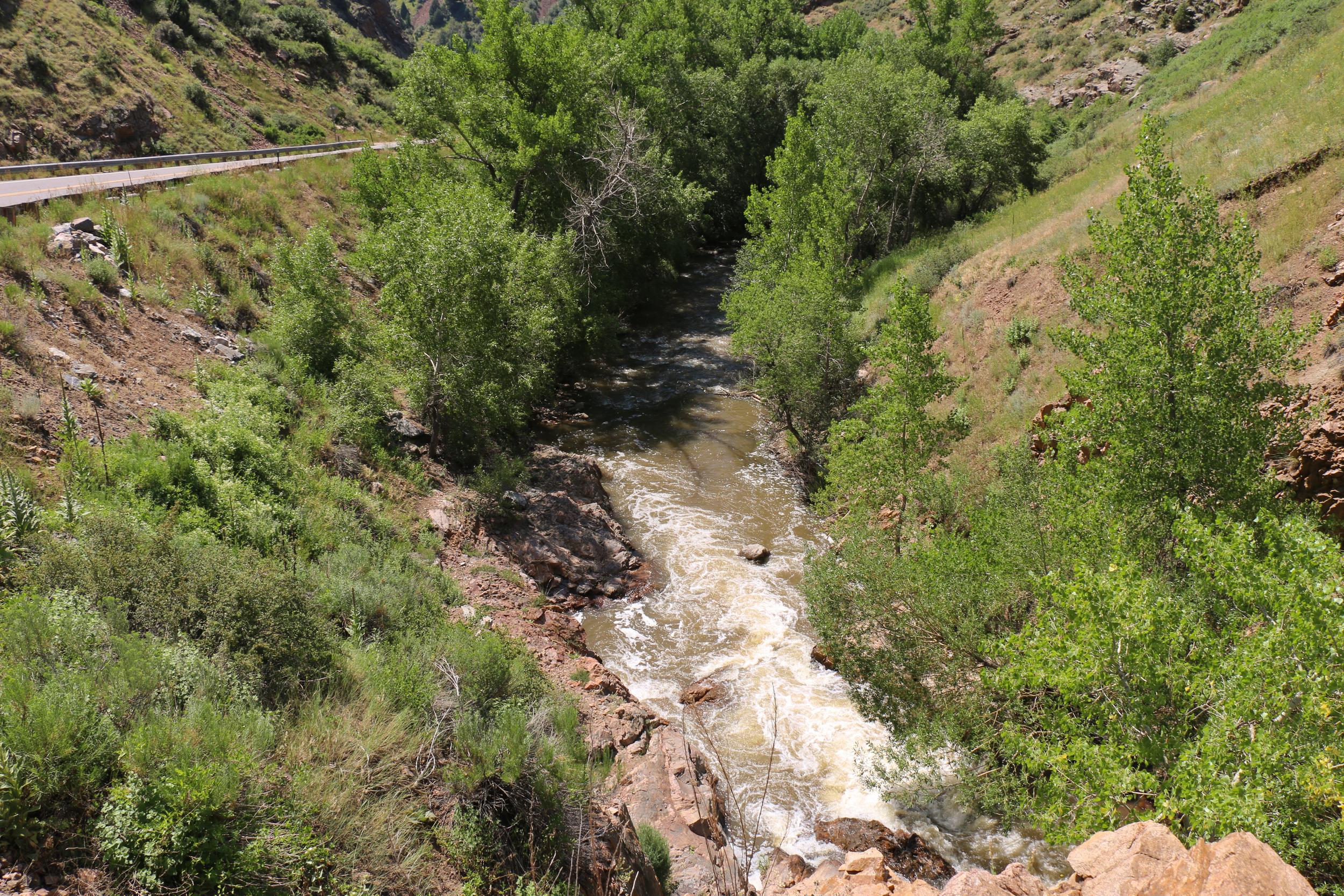 Bear Creek flowing along