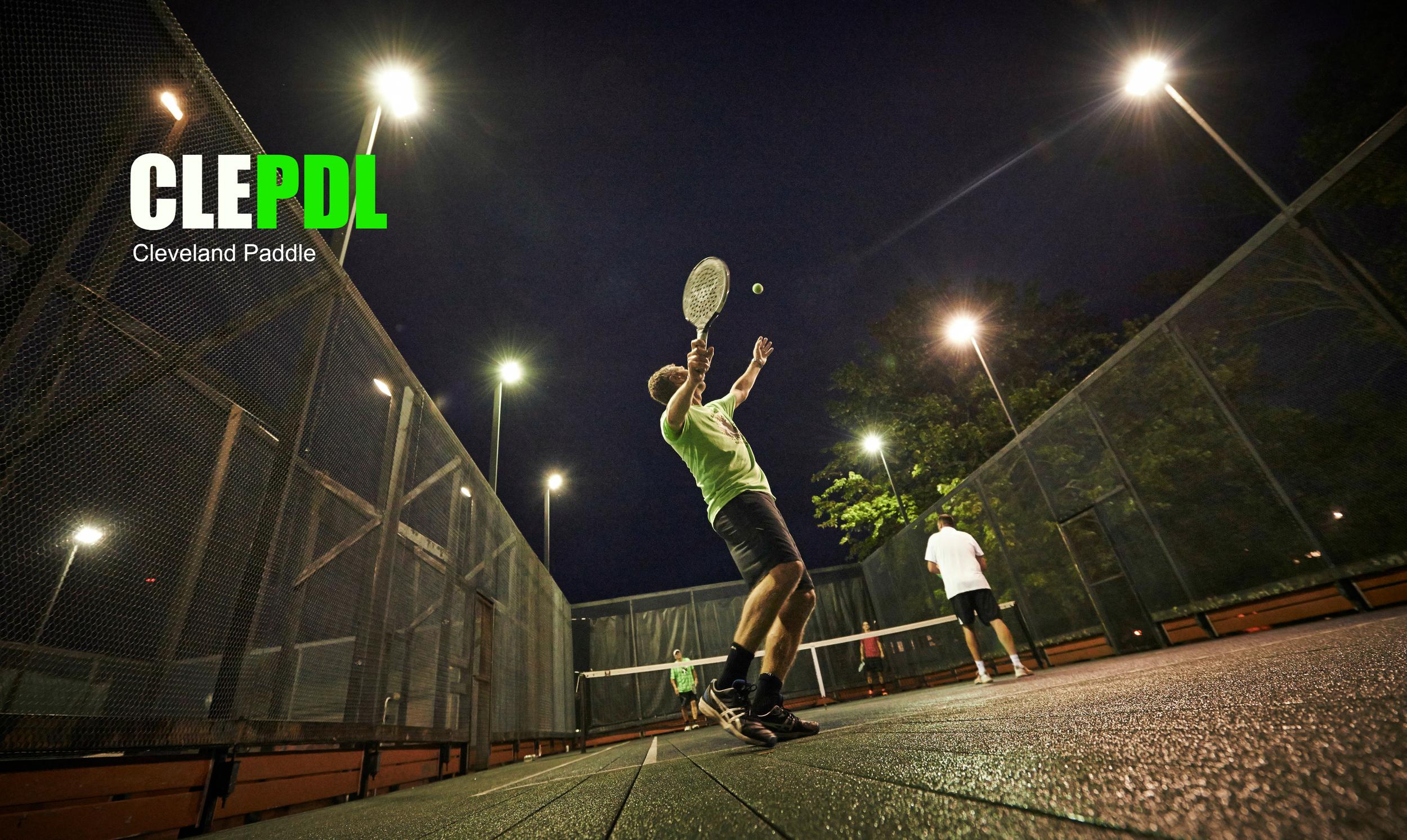 CLEPDL homepage pic.jpg