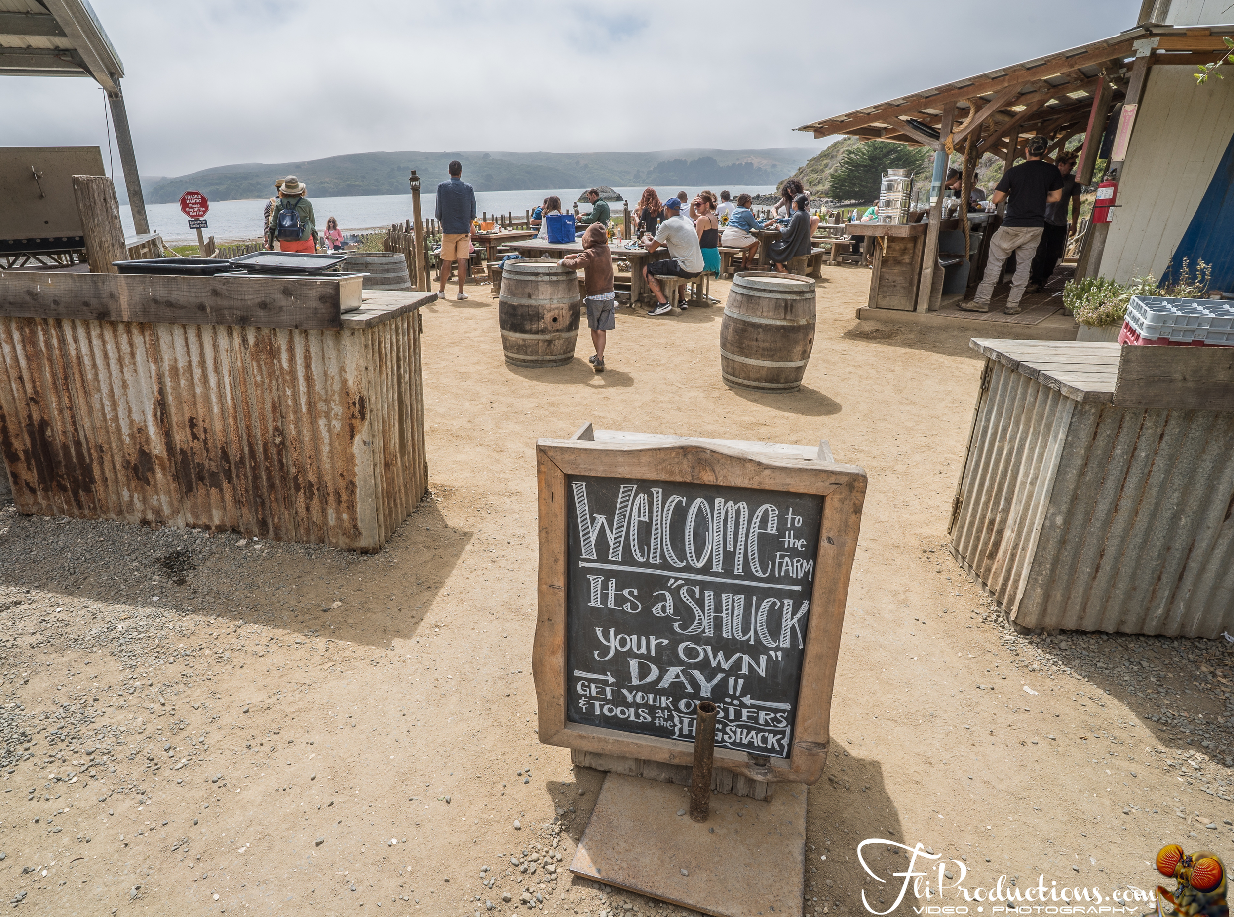 Hogs Island Oyster Co. - Point Reyes National Seashore - Califor