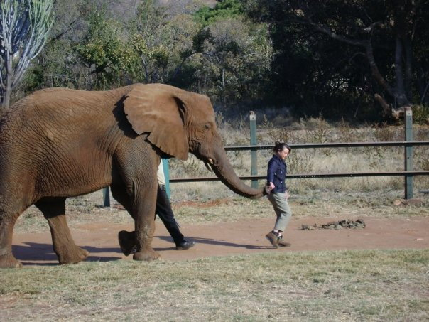 ©FlygaTwiga-AuntAmy&theBigElephant, Elephant Sanctuary, Hartbeespoortdam, South Africa