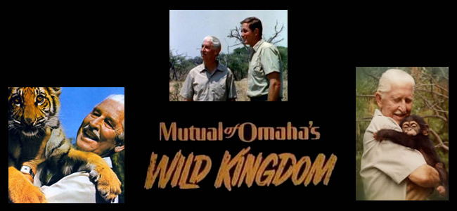 Mutual of Omaha's Wild Kingdom