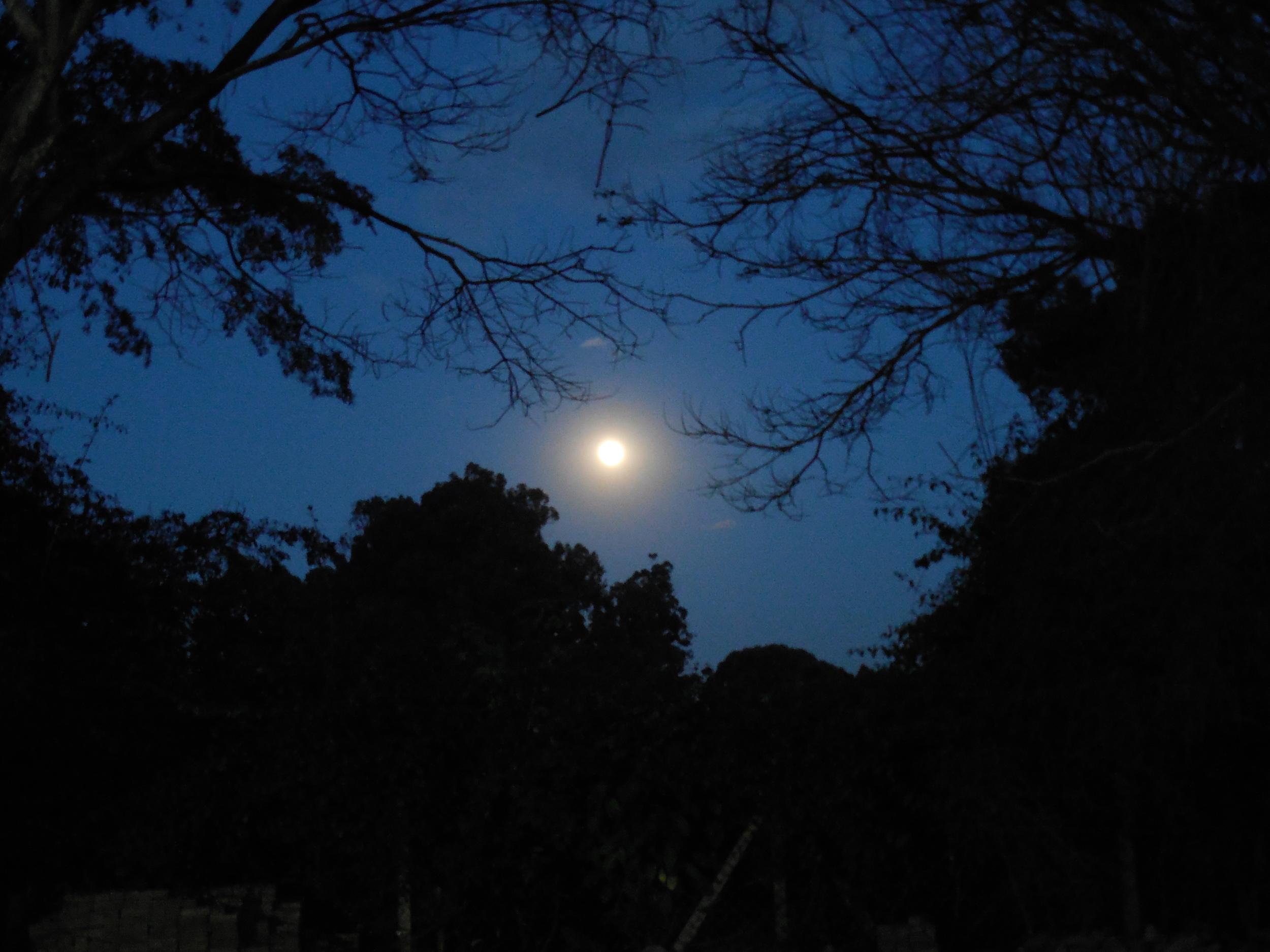 Kenya Moon © Flyga Twiga LLC