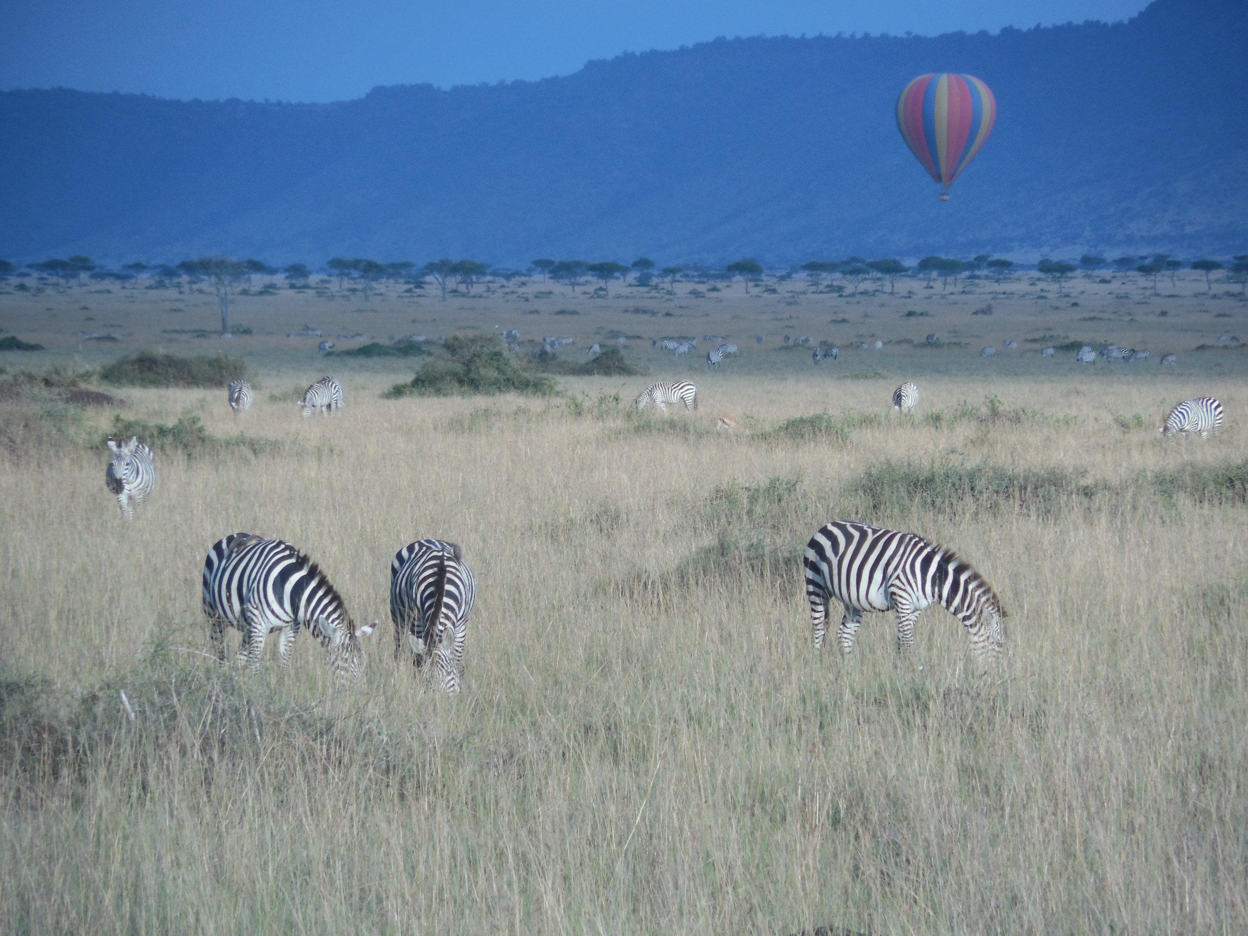 Balloon Safari Kenya © Flyga Twiga LLC