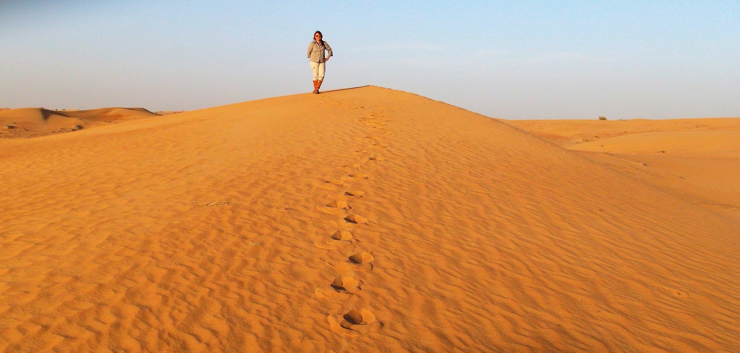 Desert Safari UAE © Flyga Twiga LLC