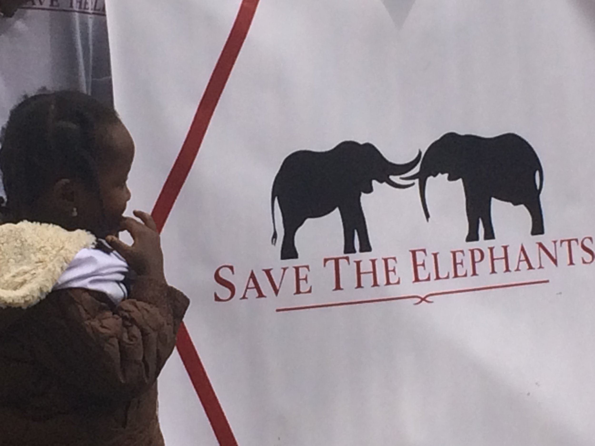Child at Save the Elephants ©Flyga Twiga LLC
