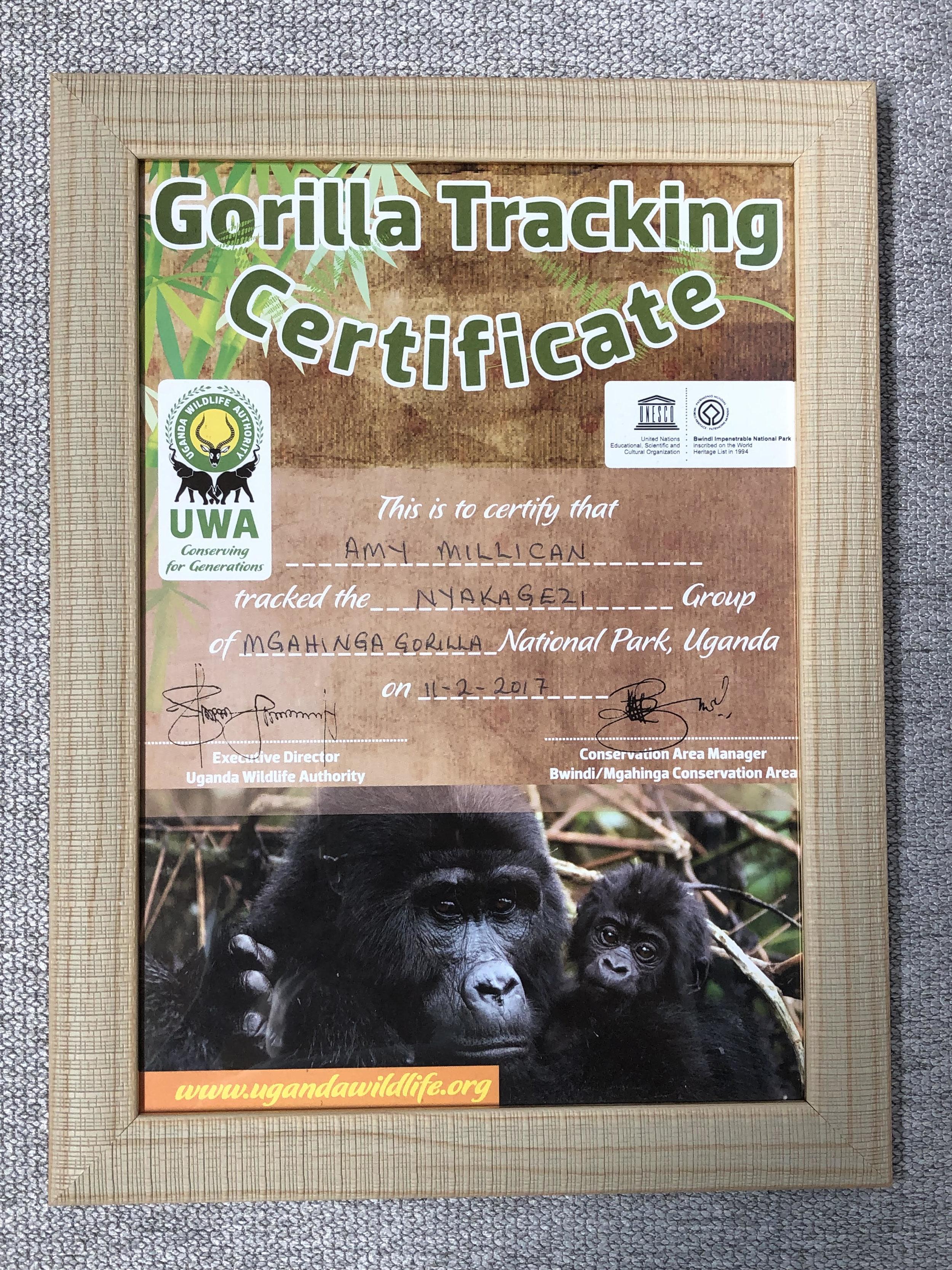 Gorilla Tracking Certificate ©Flyga Twiga™ LLC