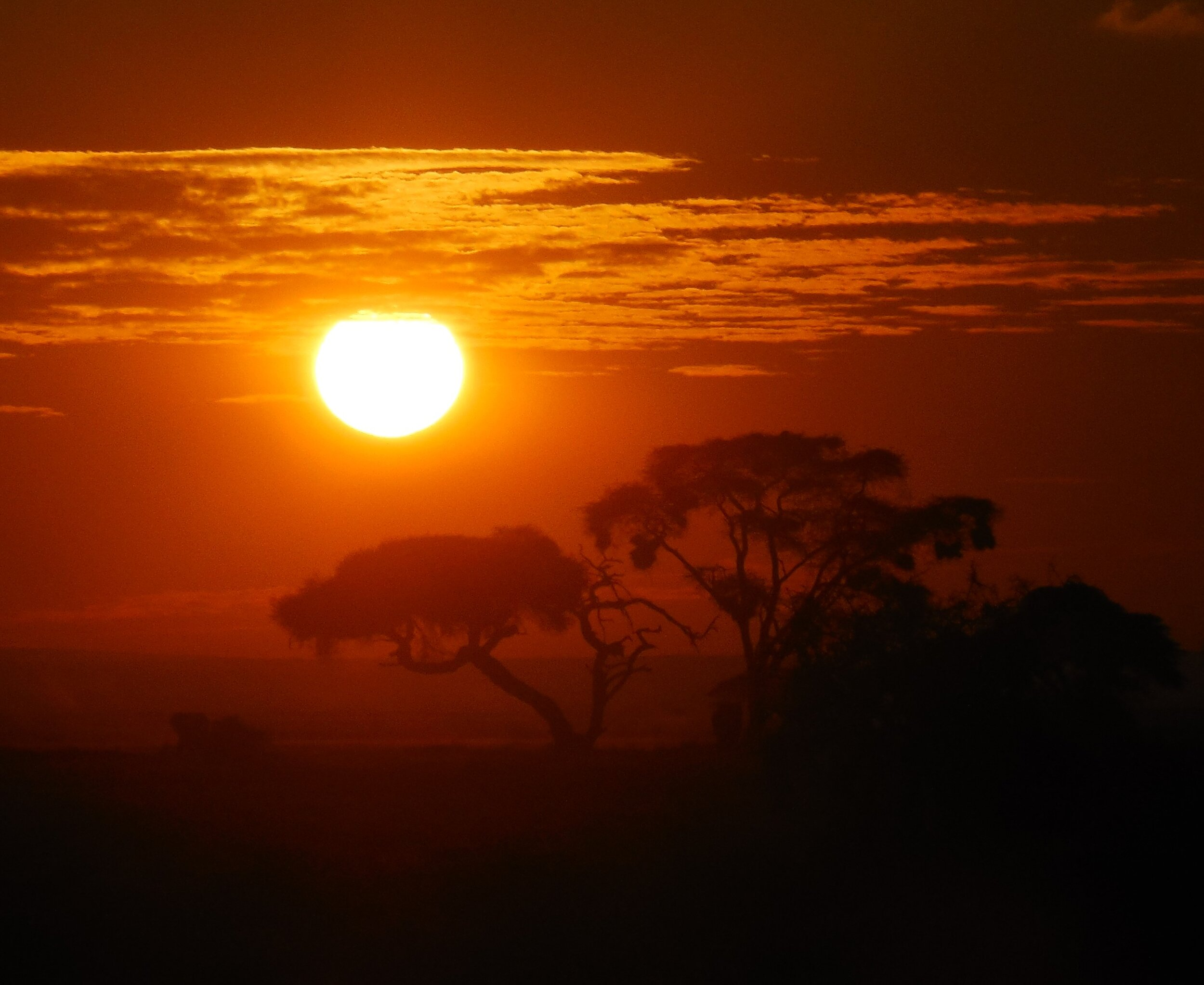 Sunset Amboselli National Park Kenya ©Flyga Twiga™ LLC