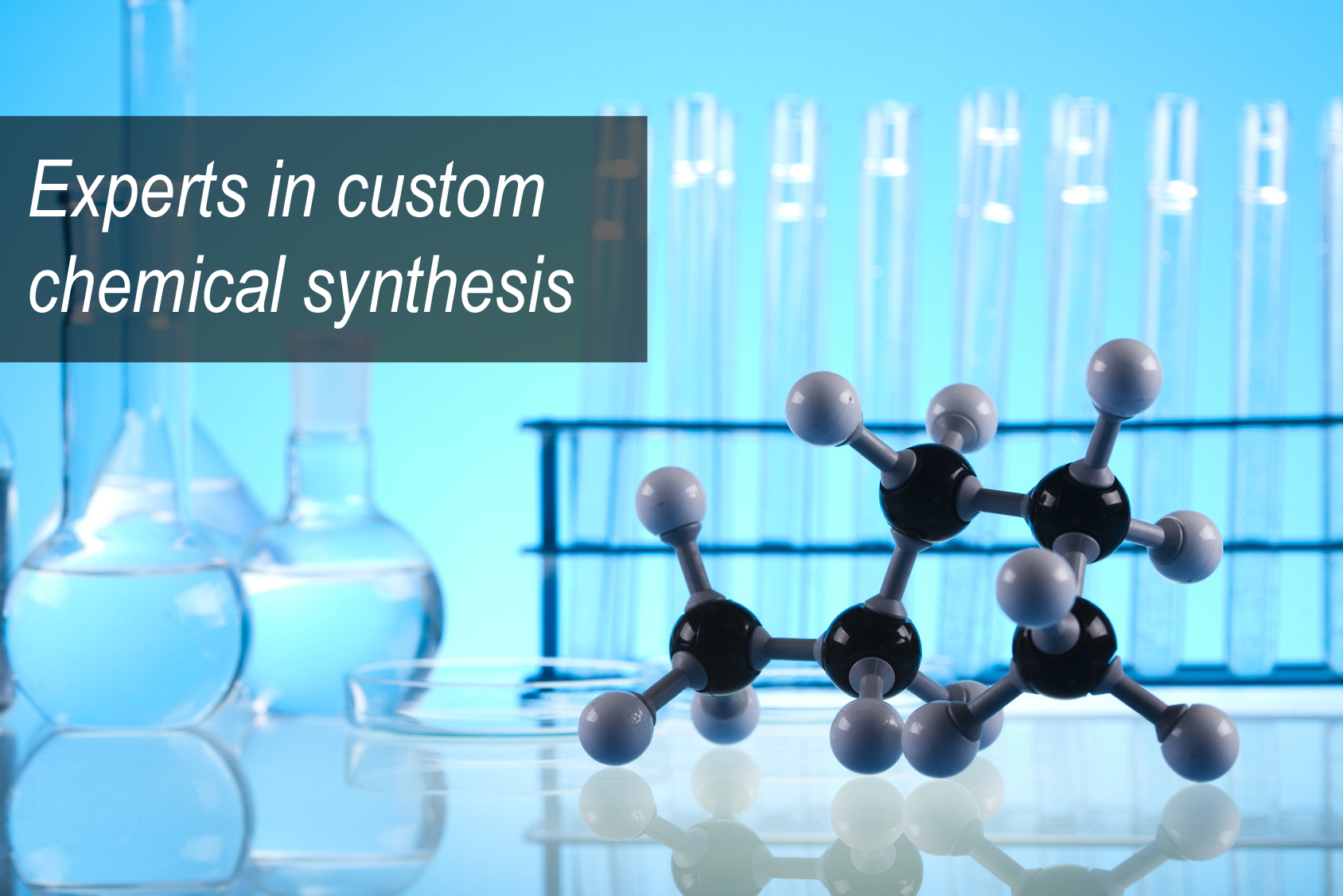 banner_customSynthesis.jpg