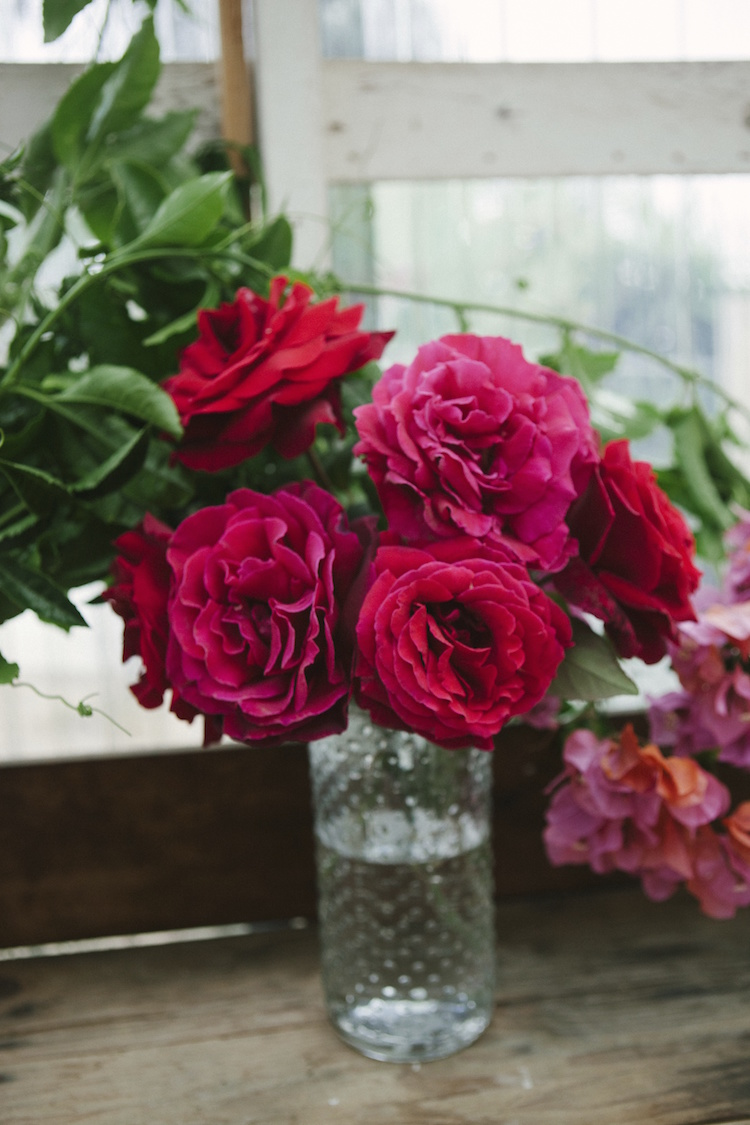 Red garden roses from Compass Florals garden. Photography by Ashley Williams.