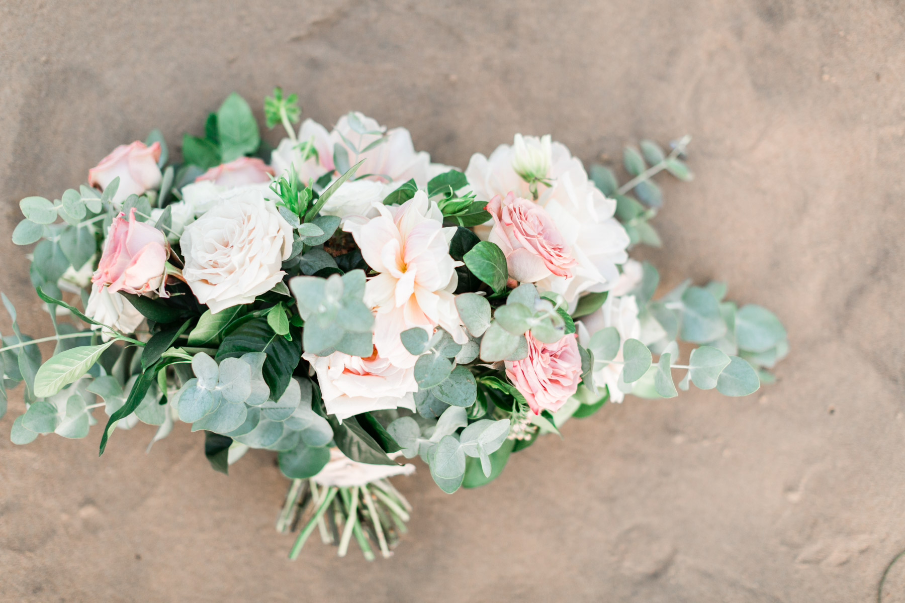 Blush and white flowers in an elegant, romantic beach bridal bouquet | Newport Beach, CA | Compass Floral | Wedding Florist in San Diego and Southern California | Cavin Elizabeth Photography