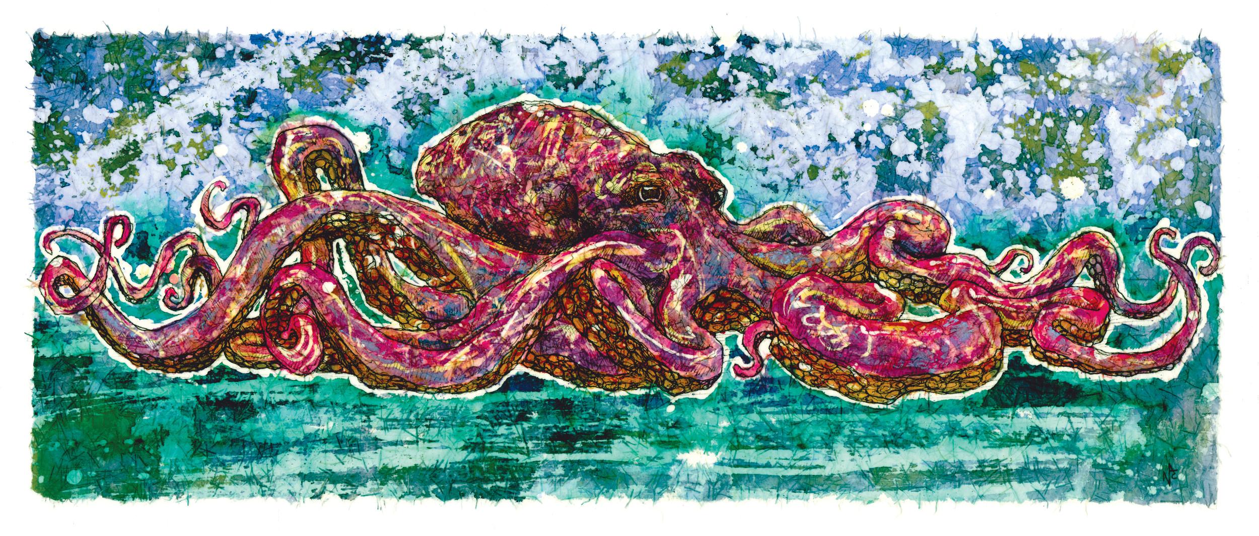 Octopus_Ursula.jpg