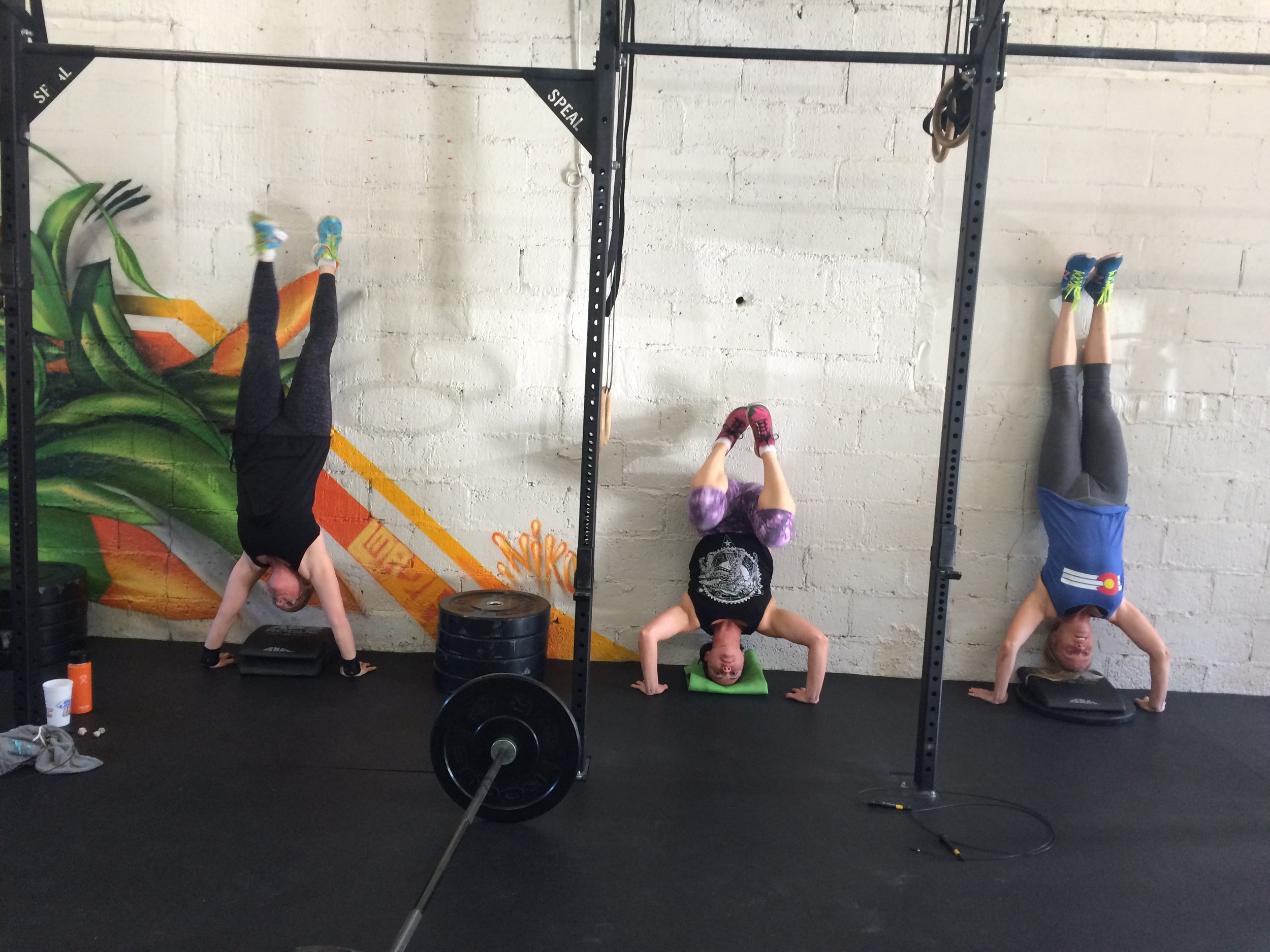 All varieties of handstand push ups yesterday!