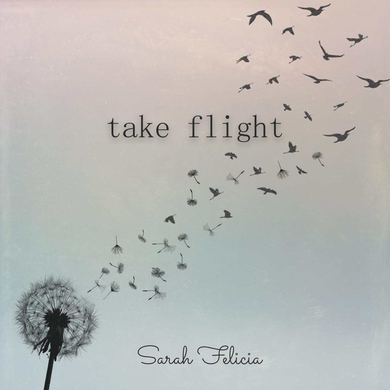 Take Flight - Sarah Felicia