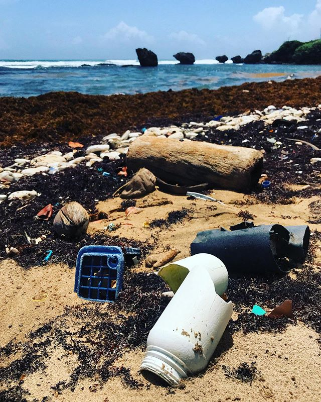 Is the #litter ruining your #photoop? #cleanthebeach #sadface still love #Barbados though