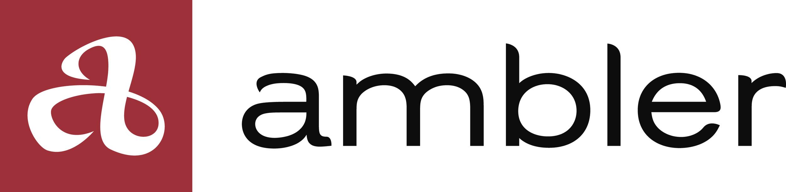 amb_logo_hrz_rgb.jpg